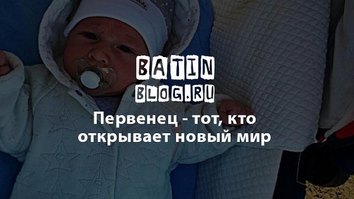 Мой первенец Пересвет - Батин Блог
