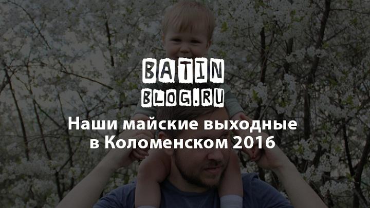 На прогулке в парке Коломенское Москва вишня - Батин Блог