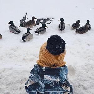Заповедник Коломенское зима 2019 Москва - Батин Блог