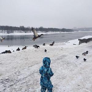 Парк заповедник Коломенское зима 2019 Москва - Батин Блог