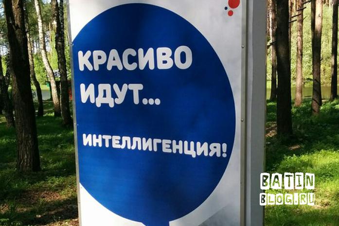 Плакат в парке Елочки