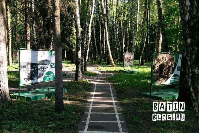 Парк Елочки Домодедово