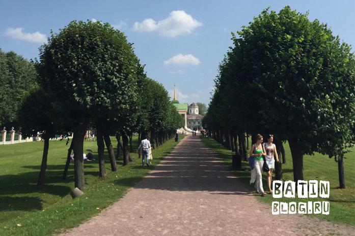 Аллея около усадьбы Шереметьевых - Батин Блог
