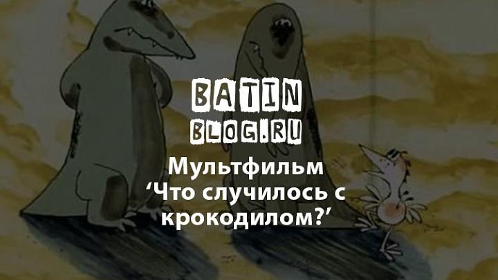 Что случилось с крокодилоам - Батин Блог