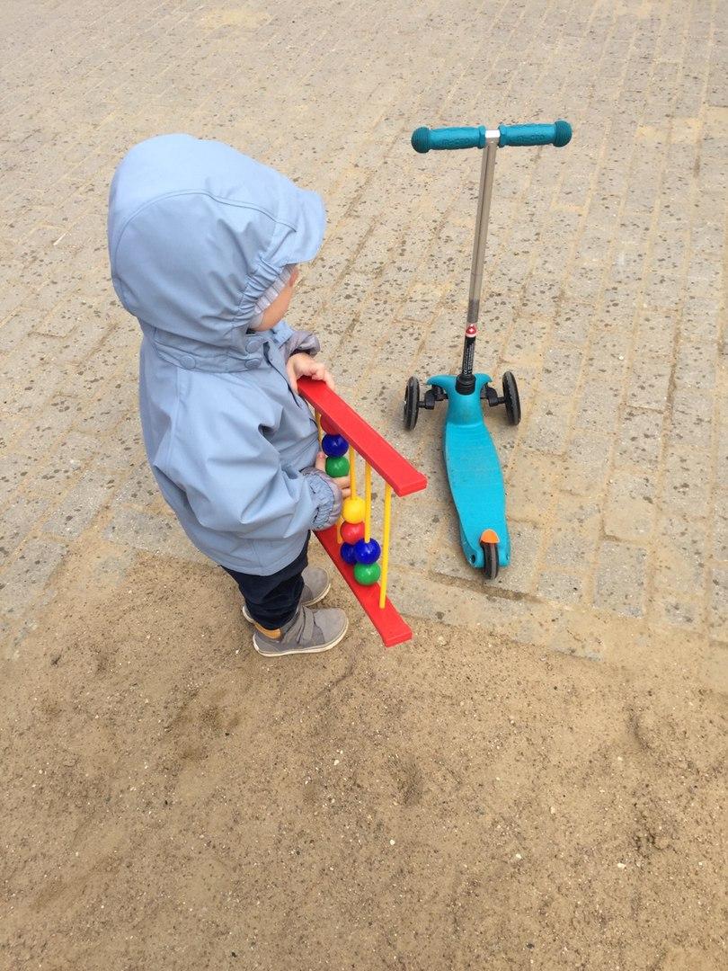 Таланты двухлетнего Пересвета - Батин Блог