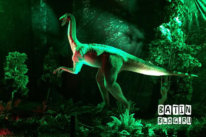 Dino club в Детском мире - Батин Блог