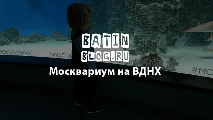 Москвариум на ВДНХ - Батин Блог