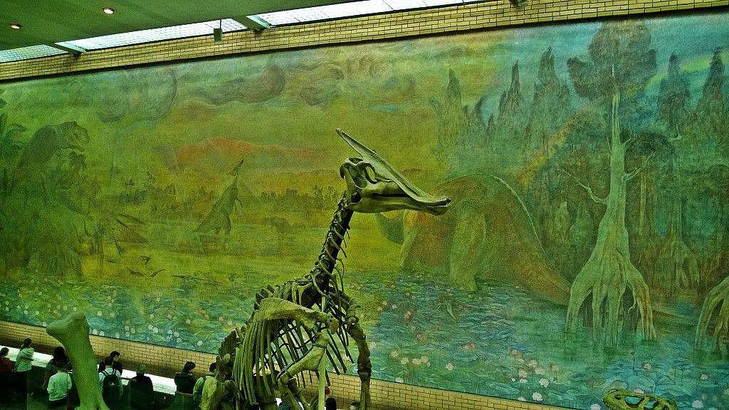 ул профсоюзная палеонтологический музей - Батин Блог