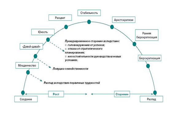 Стадии развития бизнеса - Батин Блог